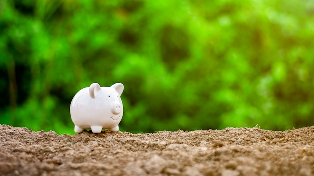 Tirelire au sol. - concept de sauvegarde et de gestion. Photo Premium
