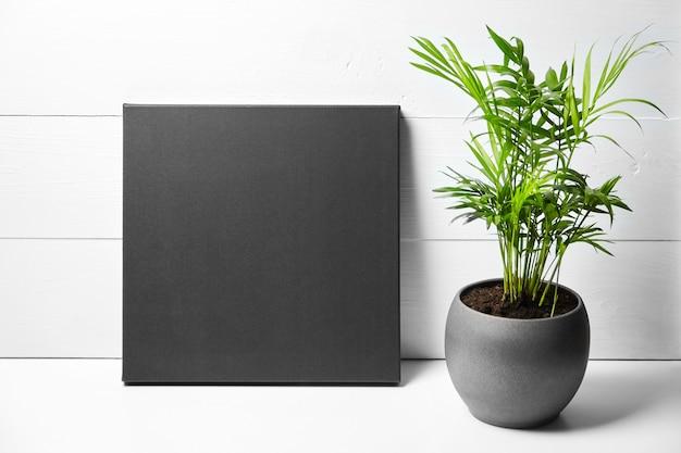 Une Toile De Coton Noire Et Une Plante Verte En Pot De Fleurs Sur Fond De Bois Blanc Photo Premium