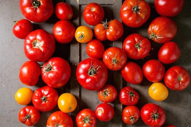 Tomates fraîches mûres Photo Premium