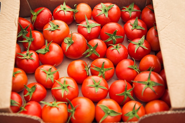Tomates fraîches rouges rassemblées dans une boîte en carton à vendre. Photo gratuit