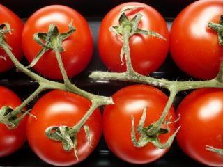 Tomates, de nombreux Photo gratuit
