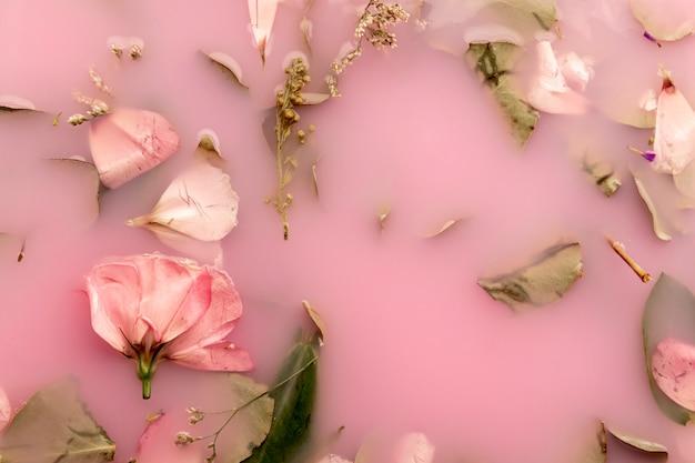 Top view roses roses dans l'eau colorée rose Photo gratuit