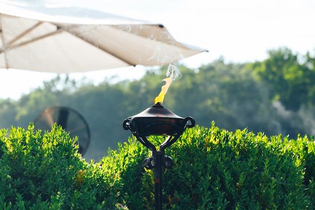 Torche allumée avec flamme orange dans le jardin utilisé comme anti-moustique Photo Premium