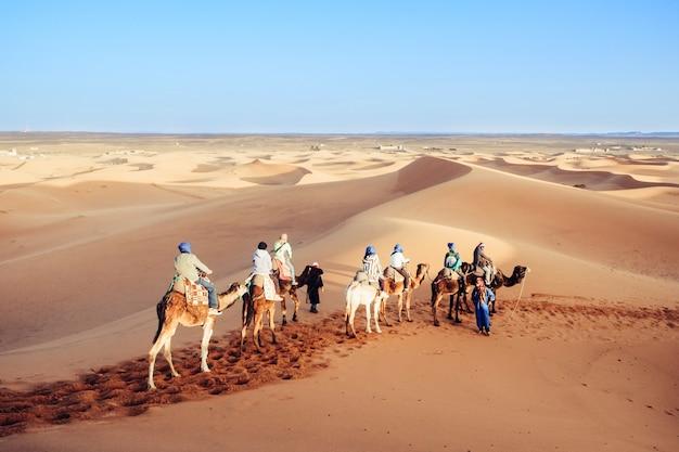 Touristes en caravane de chameaux dans le désert du sahara. erg shebbi, merzouga, maroc. Photo Premium
