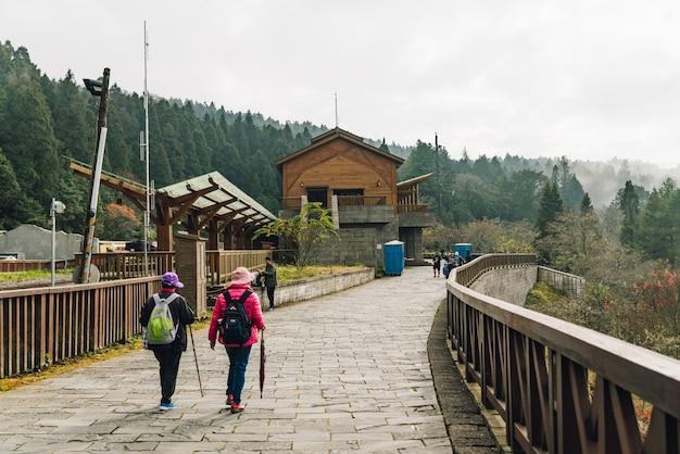 Touristes Marchant Dans La Forêt Brumeuse De La Zone De Loisirs De La Forêt Nationale D'alishan. Photo Premium