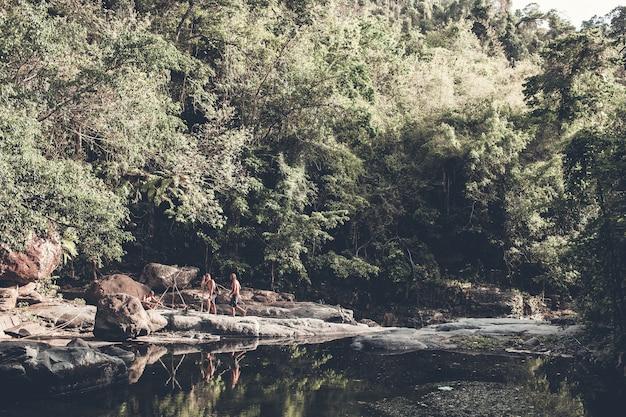 Touristes se promène dans les bois Photo gratuit