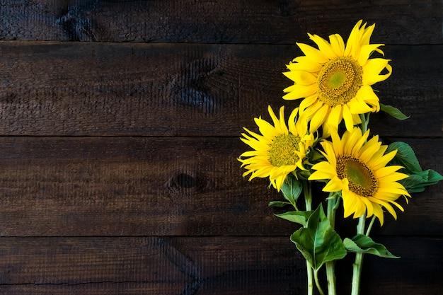 Tournesols jaunes vif sur une planche en bois rustique naturelle Photo Premium