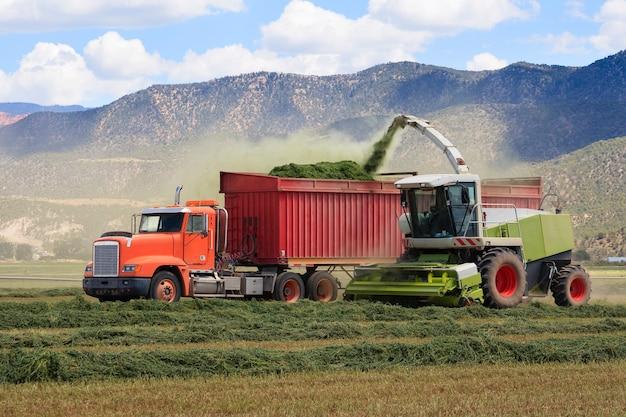 Tracteurs agricoles récoltent l'ensilage de foin pour une ferme laitière Photo Premium