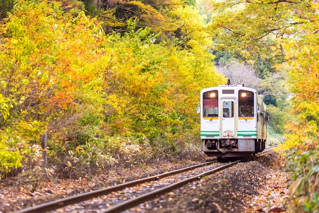 Train blanc, banlieue, fukushima, japon Photo Premium