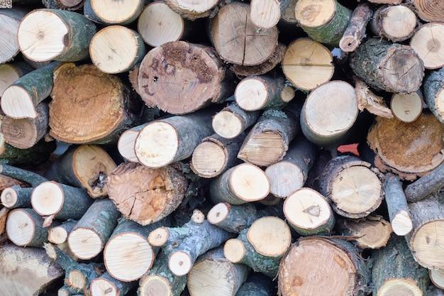 Tranches De Bûches D'arbres Les Unes Sur Les Autres Photo gratuit