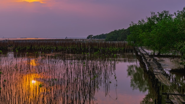 Tranquillité paysage vue panoramique. Photo Premium