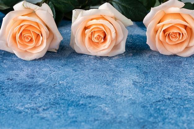 Trois roses de couleur pêche sur un fond de peinture acrylique bleu et blanc Photo Premium