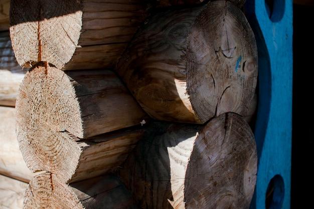 Troncs d'arbres texturés dans le parc du printemps Photo Premium