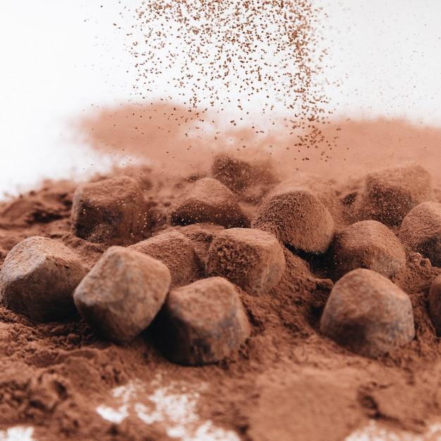 Truffes au chocolat avec poudre de cacao Photo gratuit