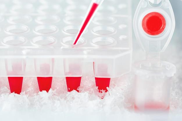 Tube en plastique, pointe de pipette remplie de mélange réactionnel rouge et puits en plastique jetables Photo Premium