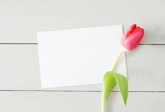 Tulipe Avec Carte De Voeux Blanche Vierge Photo gratuit