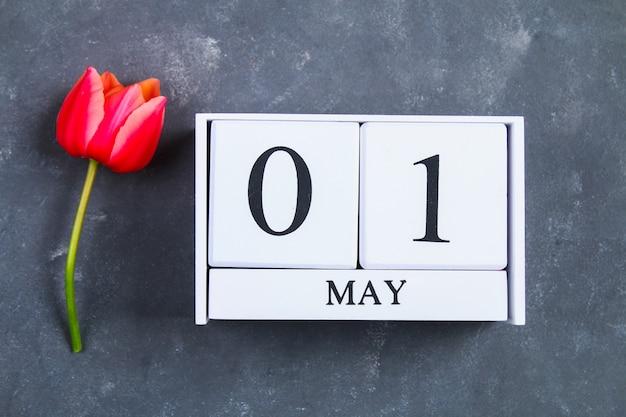 Tulipe rose sur fond de béton gris et calendrier. 1er mai jour du printemps et du travail. Photo Premium