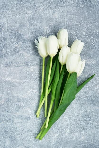 Tulipes blanches sur fond gris. Photo Premium