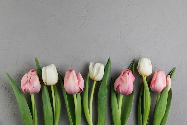 Tulipes blanches et roses fraîches sur fond de béton gris Photo gratuit