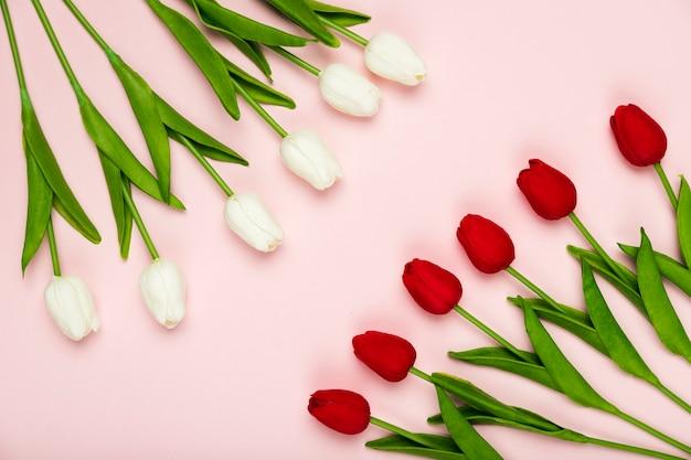 Tulipes Blanches Et Rouges Alignées Sur La Table Photo gratuit