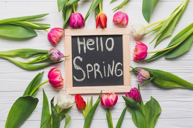 Весна фотобанки модельный бизнес беслан