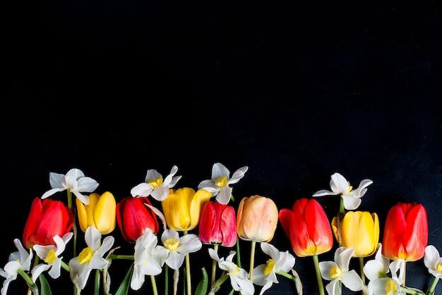 Tulipes rouges et jonquilles dans la rangée sur le noir Photo Premium