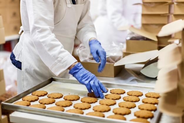 Usine de cookies Photo Premium