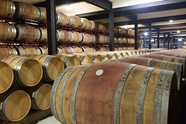 Usine de vinerie Photo gratuit