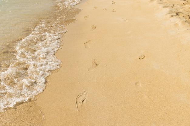 Vacances: Empreintes De Pas Sur Une Plage De Sable Fin Par Une Journée Ensoleillée Photo Premium