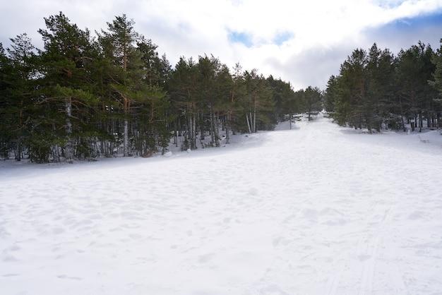 Valdelinares domaine skiable de teruel en espagne Photo Premium