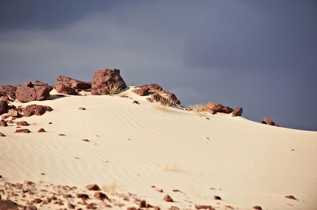 Vallée Dans Le Désert Du Sinaï Avec Des Dunes De Sable Photo Premium