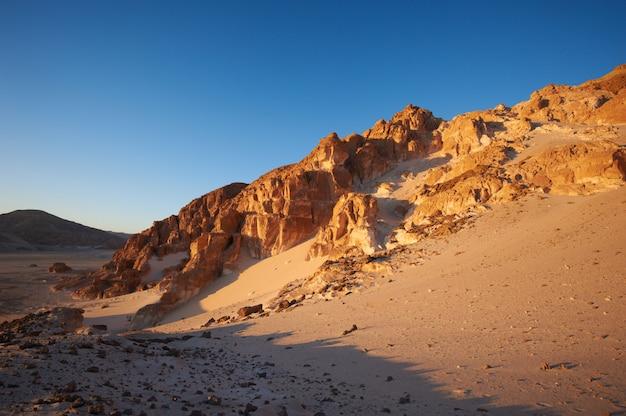 Vallée Dans Le Désert Du Sinaï Avec Montagnes Photo Premium