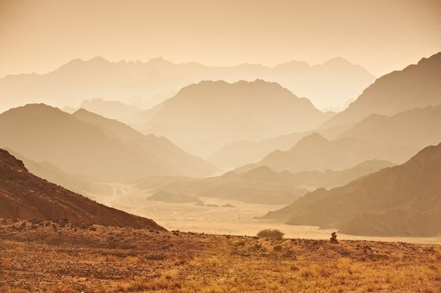 Vallée Dans Le Désert Du Sinaï Photo Premium