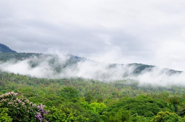 Vapeur sur fond de paysage montagne et nuage ciel. Photo Premium