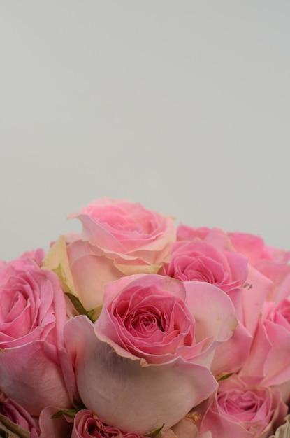 Vaporisateur d'été rose pomponella rose sur fond blanc Photo Premium