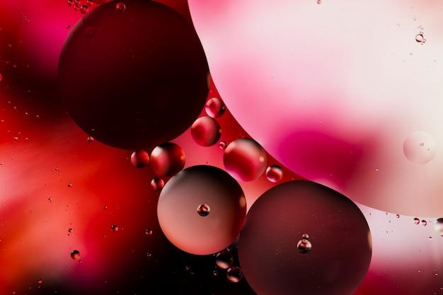 Variété de merveilleuses formes abstraites avec de l'huile dans l'eau Photo gratuit