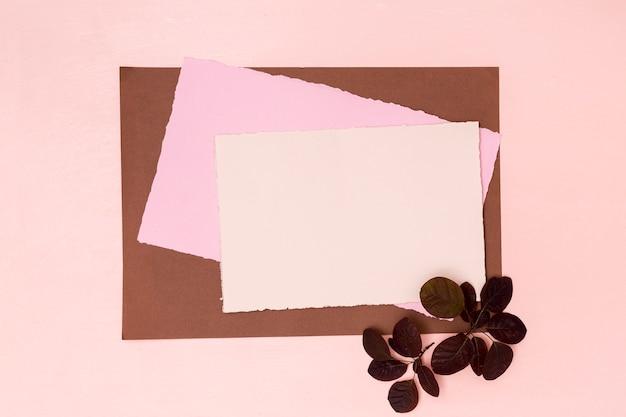Variété de papiers colorés avec des feuilles séchées Photo gratuit
