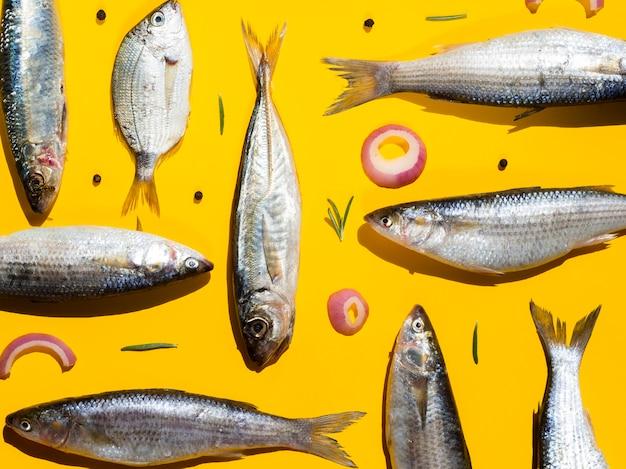 Variété de poissons frais prêts à être cuisinés Photo gratuit
