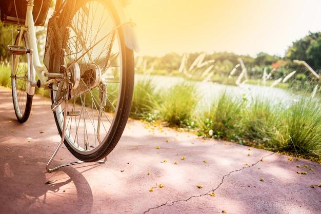 Vélo au parc public Photo Premium