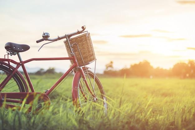Vélo classique de style japonais rouge au champ vert Photo Premium