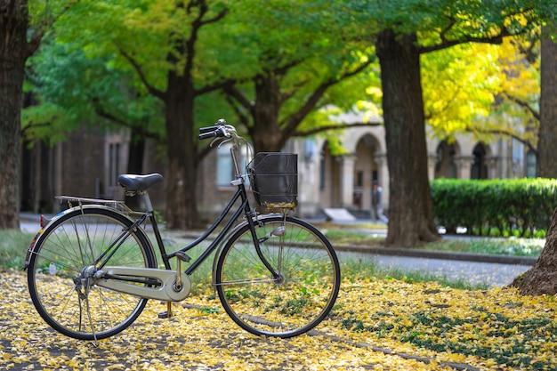 Vélo garé dans le parc, parmi les champs de ginkgo Photo Premium