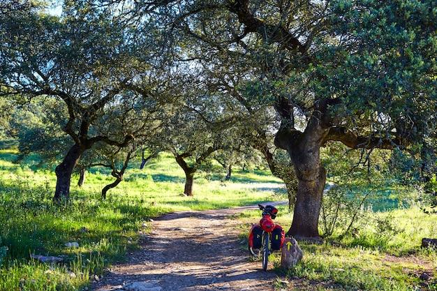 Vélo près de la via de la plata en andalousie dehesa Photo Premium