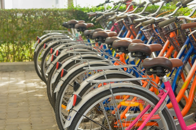 Vélos alignés dans le parc à vélos Photo Premium