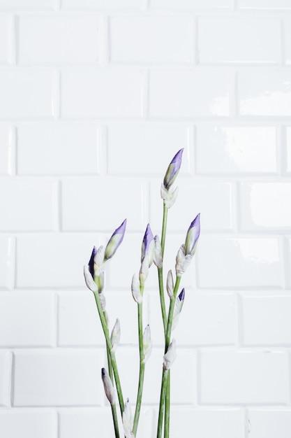 Vertical encadrant un bouquet d'iris de fleurs non soufflées sur un fond de mur de briques blanches Photo Premium