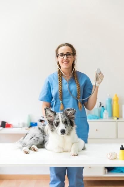 Vétérinaire montrant stéthoscope debout derrière avec chien assis sur la table dans la clinique Photo gratuit