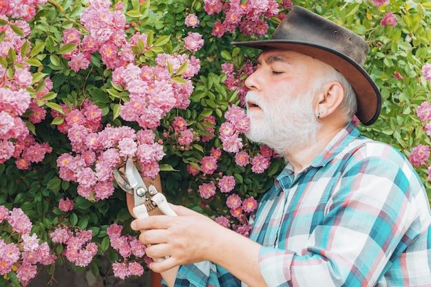 Vieil Homme Travaillant Dans Le Jardin Sur Fond De Roses Photo Premium