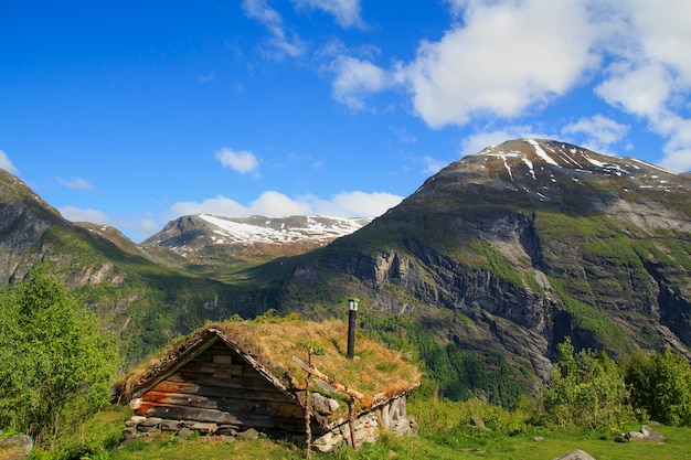 Vieille maison en bois avec toit d'herbe en norvège Photo Premium