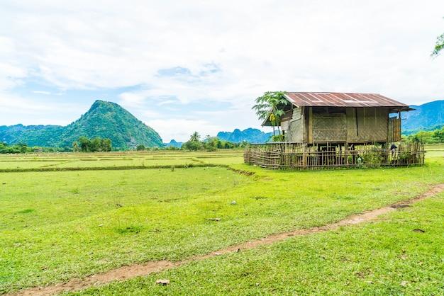 Vieille maison dans les champs à vang vieng Photo Premium
