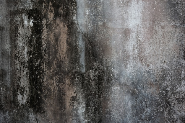 Vieux mur de ciment Photo gratuit