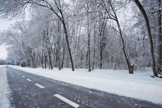 Voie Cyclable D'hiver Photo Premium